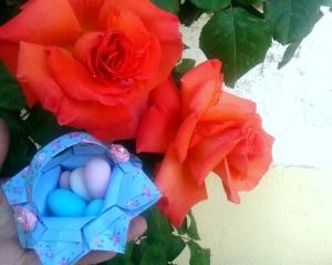 rosa ma2
