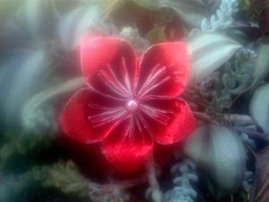 flor vermella fermalls