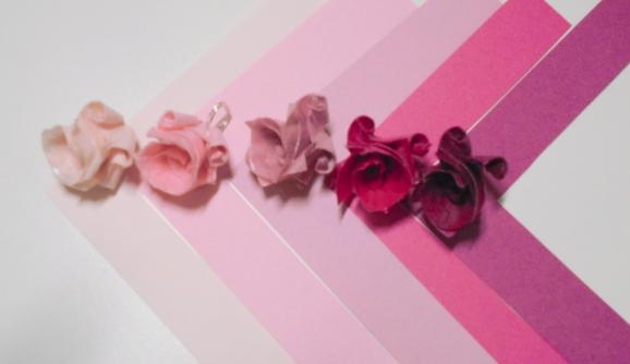 tonalitats roses