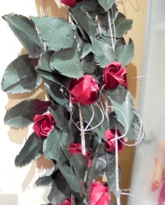 grup roses balcó