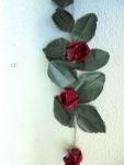 roses penjar paret