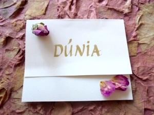 DUNIA card